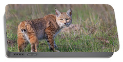 Bobcat Glance Portable Battery Charger