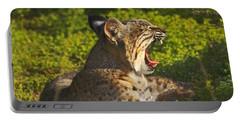 Bobcat Yawn Portable Battery Charger