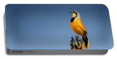 Bokmakierie Bird Calling Portable Battery Charger