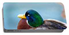 Portable Battery Charger featuring the photograph Bonding In Winter - Male Mallard Duck - Diptych Part 1 by Menega Sabidussi
