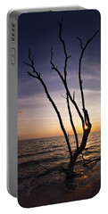 Portable Battery Charger featuring the photograph Bonita Beach Tree by Bradley R Youngberg