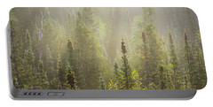 Boreal Morning Portable Battery Charger