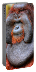 Bornean Orangutan Iv Portable Battery Charger by Lourry Legarde