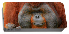 Bornean Orangutan Portable Battery Charger by Lourry Legarde