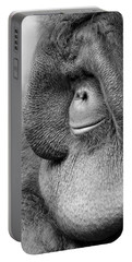 Bornean Orangutan V Portable Battery Charger
