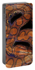Brazilian Rainbow Boa Portable Battery Charger by Art Wolfe