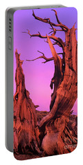 Portable Battery Charger featuring the photograph Bristlecone Pine At Sunset White Mountains Californa by Dave Welling