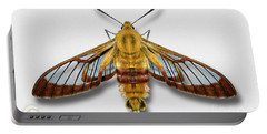 Broad-bordered Bee Hawk Moth Butterfly - Hemaris Fuciformis Naturalistic Painting -nettersheim Eifel Portable Battery Charger