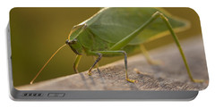 Broad-winged Katydid Portable Battery Charger