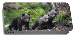 Brown Bear Cubs Croatia Portable Battery Charger