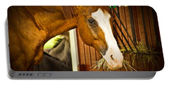 Portable Battery Charger featuring the photograph Brown Horse by Joann Copeland-Paul