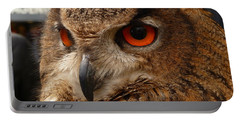 Brown Owl Portable Battery Charger by Vicki Spindler