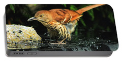 Brown Thrasher Portable Battery Charger