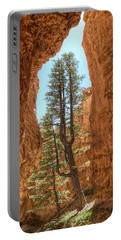 Portable Battery Charger featuring the photograph Bryce Canyon Trees by Tammy Wetzel