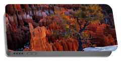 Bryce Canyon Winter Light Portable Battery Charger by Leland D Howard