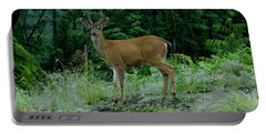 Portable Battery Charger featuring the photograph Buck by Rod Wiens