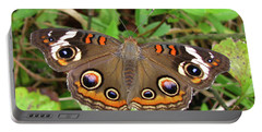 Portable Battery Charger featuring the photograph Buckeye Butterfly by Donna Brown