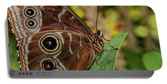 Portable Battery Charger featuring the photograph Blue Morpho Butterfly by Olga Hamilton