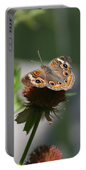 Portable Battery Charger featuring the photograph Buckeye by Karen Silvestri