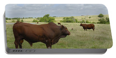 Portable Battery Charger featuring the photograph Bull And Cattle by Charles Beeler