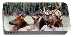 Bull Elk And His Girls 2 Portable Battery Charger
