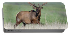 Portable Battery Charger featuring the photograph Bull Elk In Velvet by Jack Bell