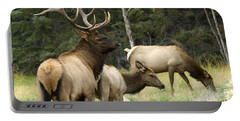 Bull Elk With His Harem Portable Battery Charger