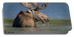 Portable Battery Charger featuring the photograph Bull Moose At Fishercap by Jack Bell