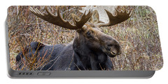Bull Moose In Autumn Portable Battery Charger by Jack Bell