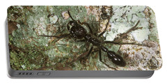 Bullet Ant Portable Battery Charger by Gregory G. Dimijian, M.D.