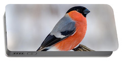 Bullfinch On The Edge Portable Battery Charger
