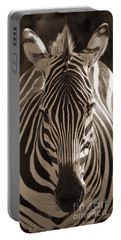 Portable Battery Charger featuring the photograph Burchell's Zebra by Chris Scroggins