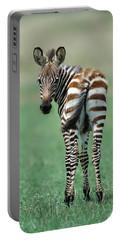 Burchells Zebra Foal Masai Mara Kenya Portable Battery Charger