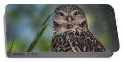 Burrowing Owl Portable Battery Charger by Linda Villers