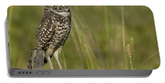 Burrowing Owl Stare Portable Battery Charger