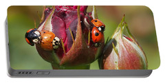 Busy Ladybugs Portable Battery Charger