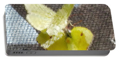 Sulfur Butterflies Mating Portable Battery Charger