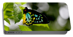 Butterfly Iv Portable Battery Charger by Tom Prendergast