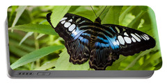 Portable Battery Charger featuring the photograph Butterfly On Leaf   by Lars Lentz