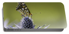 Portable Battery Charger featuring the photograph Butterfly On Thistle by Peter v Quenter