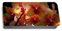Portable Battery Charger featuring the photograph Butterfly Orchids by Rodney Lee Williams