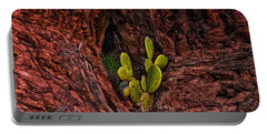 Cactus Dwelling Portable Battery Charger by Mark Myhaver