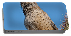 Cactus Wren Singing Portable Battery Charger