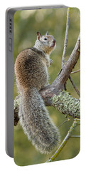 Portable Battery Charger featuring the photograph California Ground Squirrel by Doug Herr