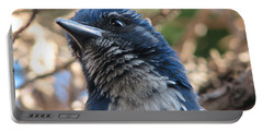 California Western Scrub Jay Portable Battery Charger
