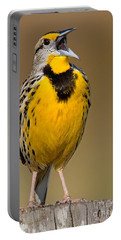 Portable Battery Charger featuring the photograph Calling Eastern Meadowlark by Jerry Fornarotto