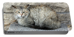 Camo Cat Portable Battery Charger