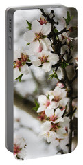 Portable Battery Charger featuring the photograph Capay Valley Almond Blossom by Jennifer Muller