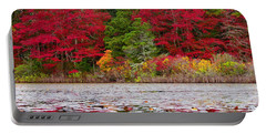 Portable Battery Charger featuring the photograph Cape Cod Autumn by Dianne Cowen