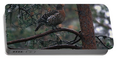 Capercaille Hen In A Pine Tree Portable Battery Charger